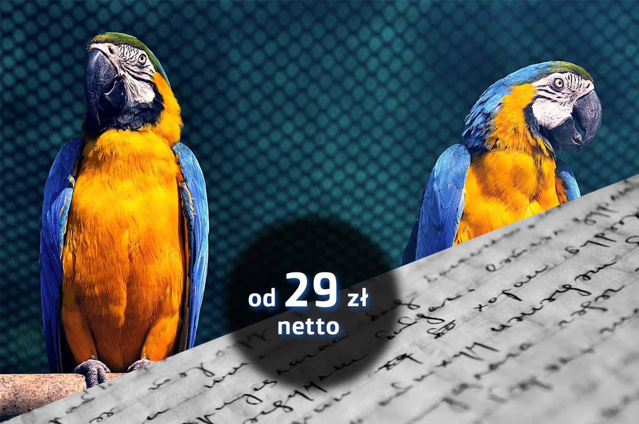 fanpage, Facebook, strony, internetowe, www, biznes, online, firmowe, Wrocław, Wałbrzych, Bolesławiec